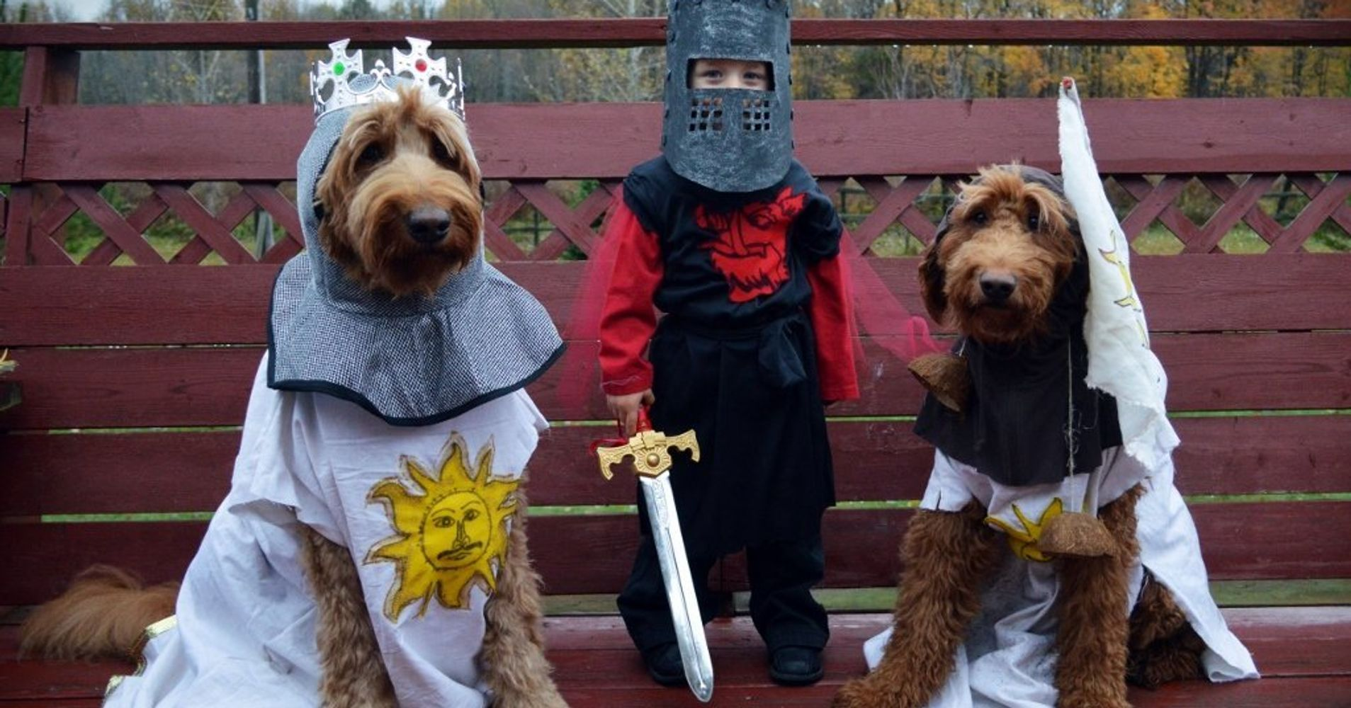 30 Perfect Halloween Costumes For Kid And Dog Bffs Huffpost Life