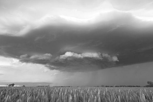 Raincloud | Hershey,
