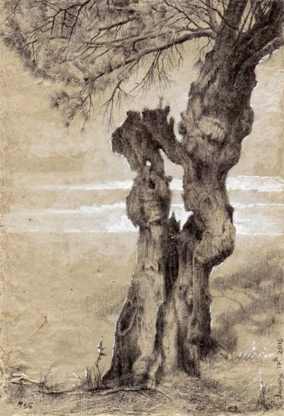 Tree #55, ballpoint pen and gouache on brown handmade paper, 4×6″, January 17, 2016