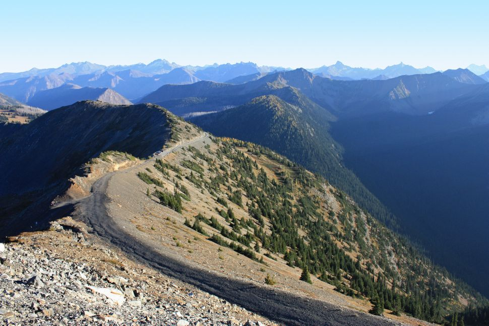 "Hart's Pass is the <a href=""http://fs.fed.us/wildflowers/regions/Pacific_Northwest/HartsPass/index.shtml"" target=""_blank"">hig"
