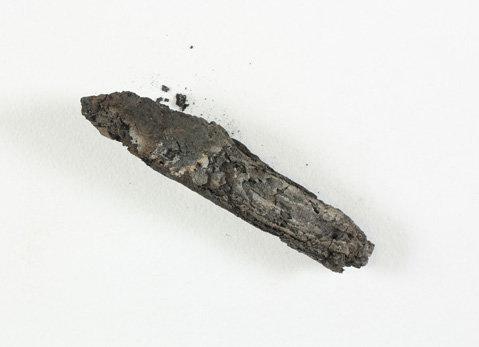 Image of the En-Gedi scroll courtesy of the Leon Levy Dead Sea Scrolls Digital Library IAA.