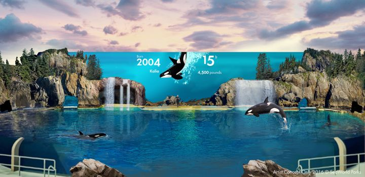 """San Diego's new Orca Encounter will """"combine multiple aquariums, exciting rides and digital technologies,"""" according to a press release."""