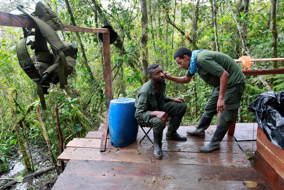 Members of the 51st Front of the FARC have a haircut and a beard shave at a camp in Cordillera Oriental. Aug 16.