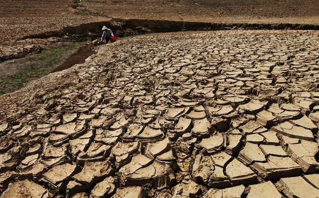 This yearis ontrack to be the hottest on record. Climate change has been linked toseveral...