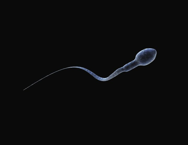 Too Many Women Are Assaulted By Their Sperm Donors | HuffPost