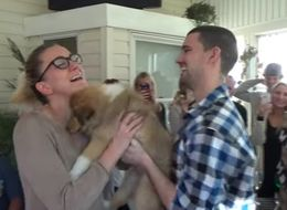 This Guy Upstaged His Own Proposal By Giving His Girlfriend A Puppy