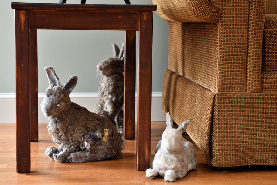 Previously, she made self-portraits using household dust, but she turned dust bunnies into rabbit sculptures for her current