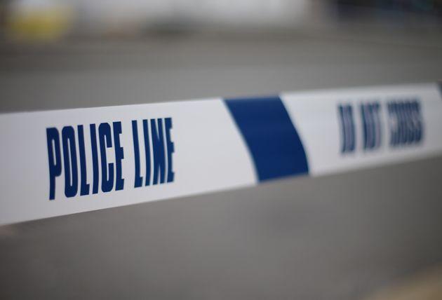 Five people arrested after four police officers injured indog