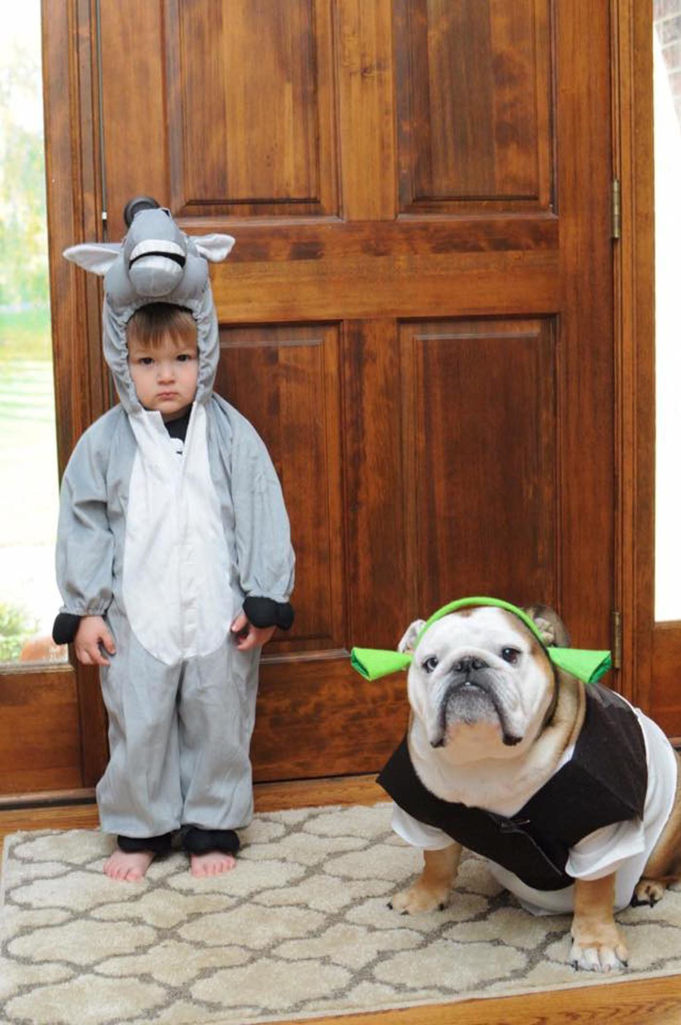 8 Donkey And Shrek  sc 1 st  HuffPost & 30 Perfect Halloween Costumes For Kid And Dog BFFs | HuffPost