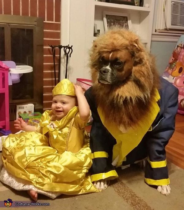 """Via <a href=""""http://www.costume-works.com/costumes_for_pets/beauty-and-the-beast.html"""" target=""""_blank"""">Costume Works</a>"""