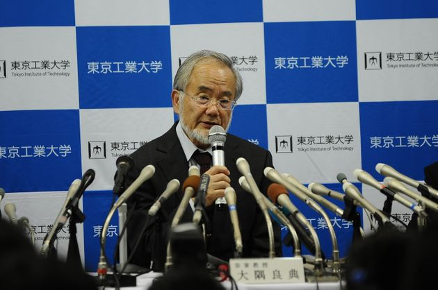 Japan's Ohsumi wins Nobel Prize in medicine