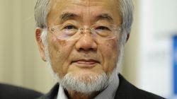 2016 Nobel Prize Winner Yoshinori Ohsumi's Discoveries Could Change How We Treat