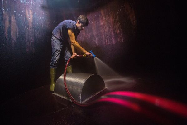 A worker uses a high pressure water hose to clean a fermentation tank.
