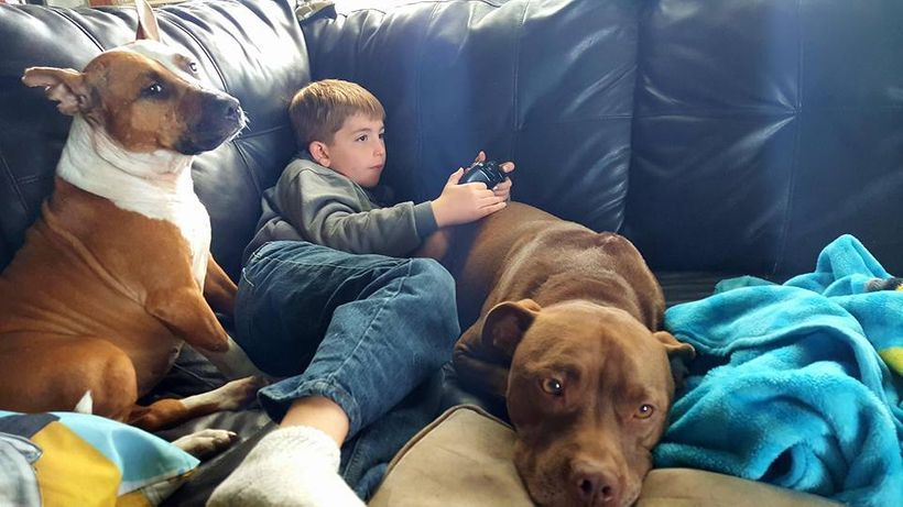 A dog (or two) is a child's best friend.