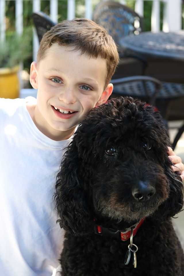 Pets are part of our family...shouldn't we want to protect them the best way we know how?