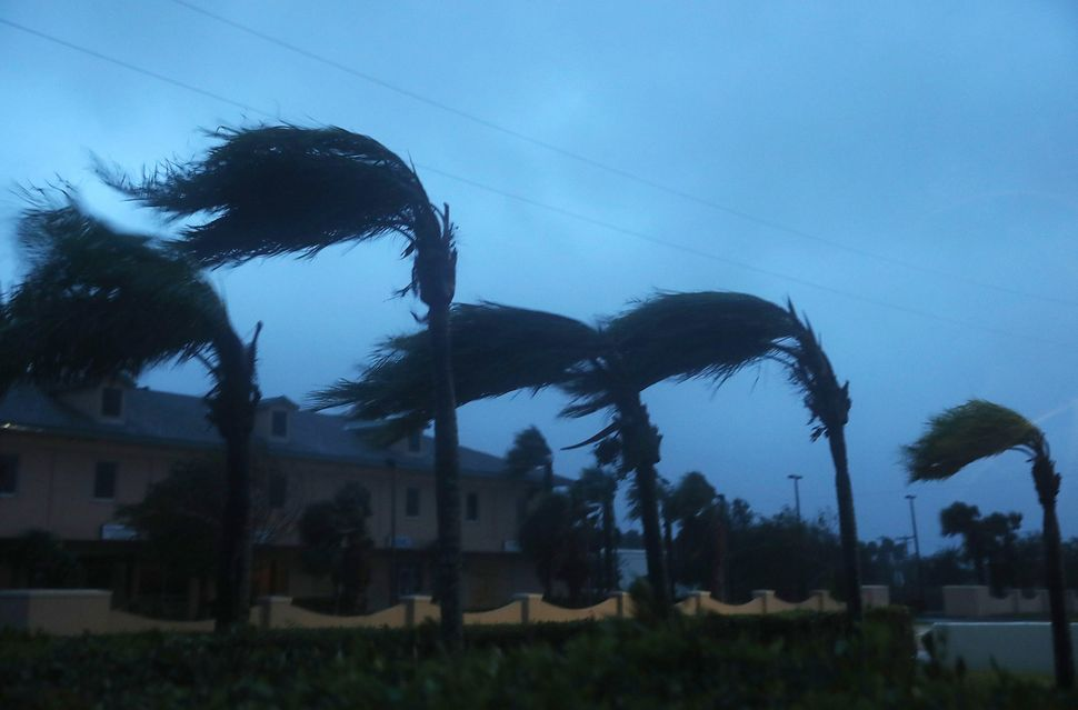 Palm trees sway from the winds of Hurricane Matthew on Friday on Cocoa Beach, Florida. Hurricane Matthew passed by offshore a