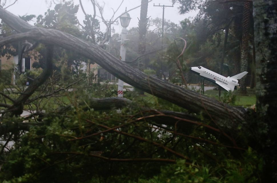 A Space Shuttle model stands near some downed trees in Cocoa Beach, Florida.