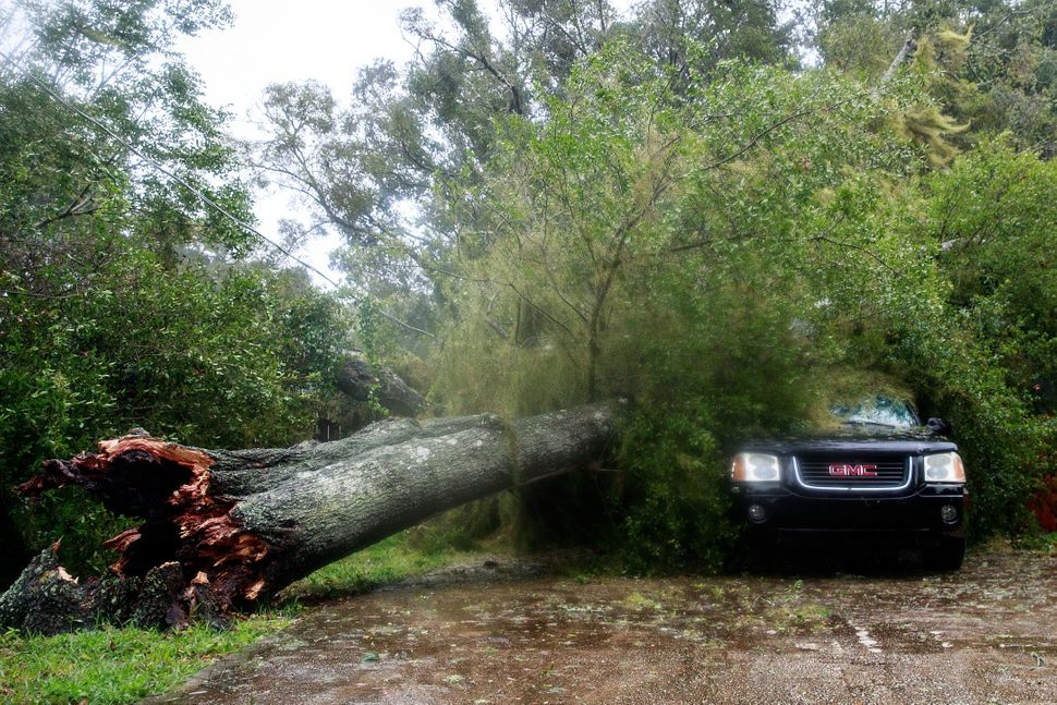 A downed tree from high winds rests against a car in a residential community after Hurricane Matthew passes through in Ormond