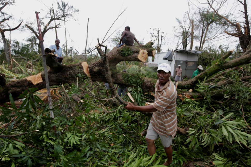 Men clear a fallen tree from after Hurricane Matthew passed through Les Cayes, Haiti, October 6, 2016.