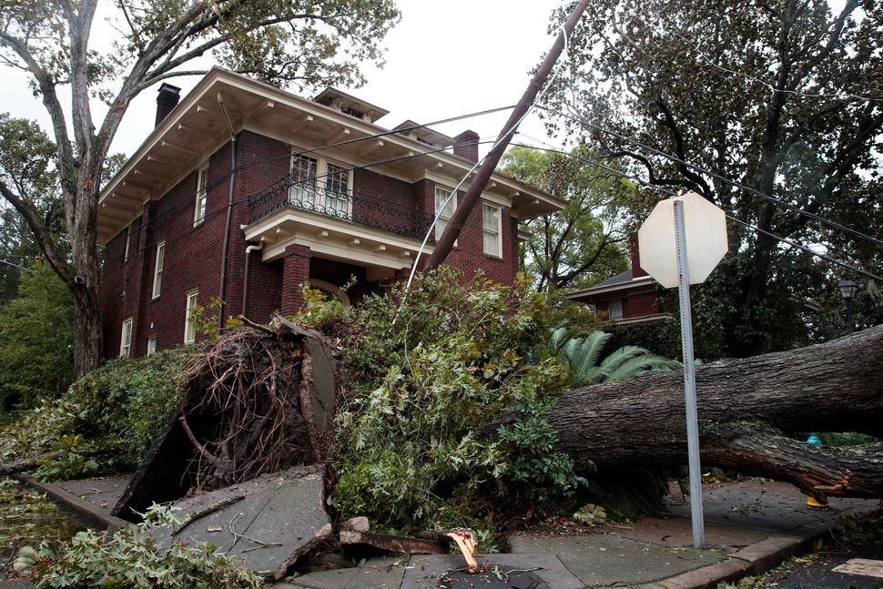 A view of downed tree and damaged power lines in a residential neighborhood on Oct. 8, 2016 in Savannah, Georgia.