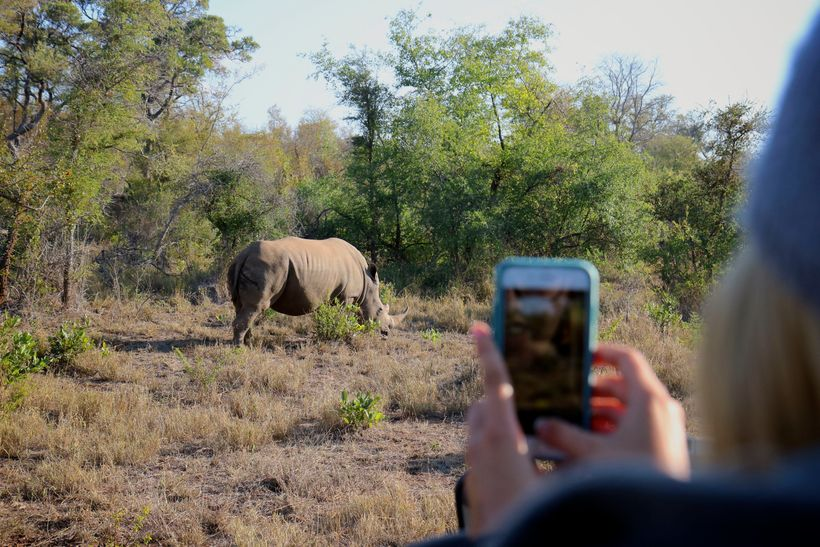 A visitor to Makalali photographs a white rhino. Makalali conservancy offers people  opportunities for eco-tourism, involving