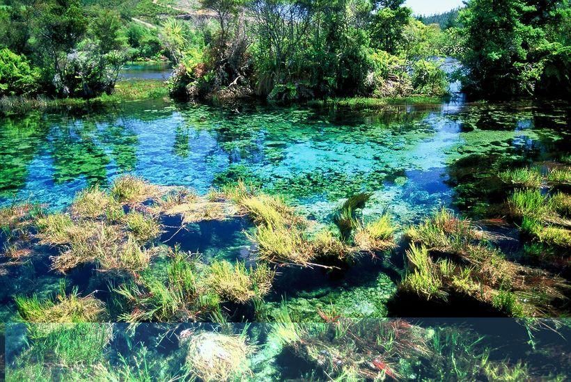 The beautiful Te Waikoropupu springs