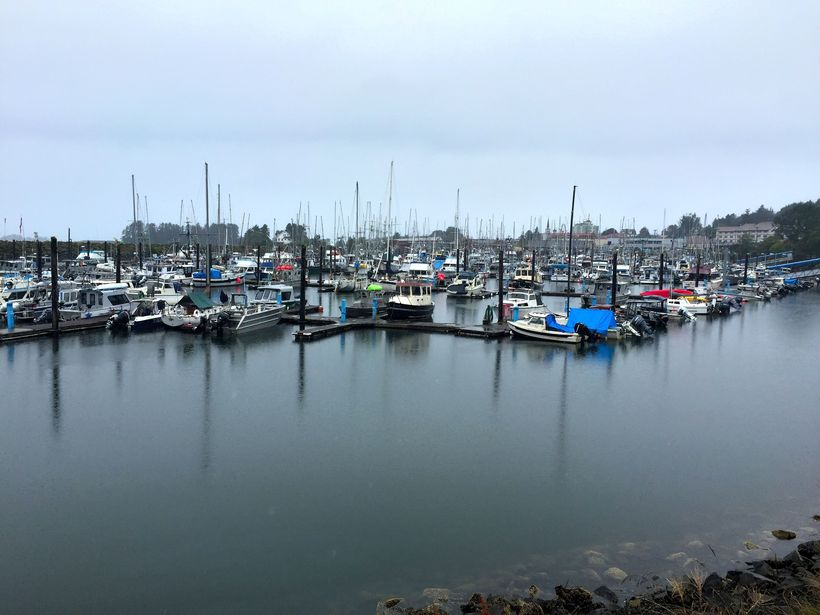 The marina in Sitka