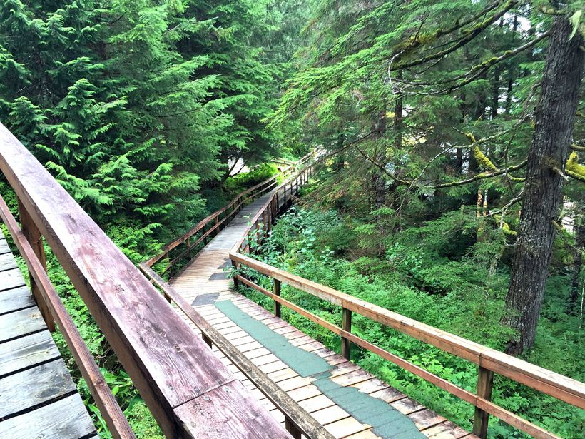 The wooden boardwalk marks the beginning of the hike to Baranof Lake