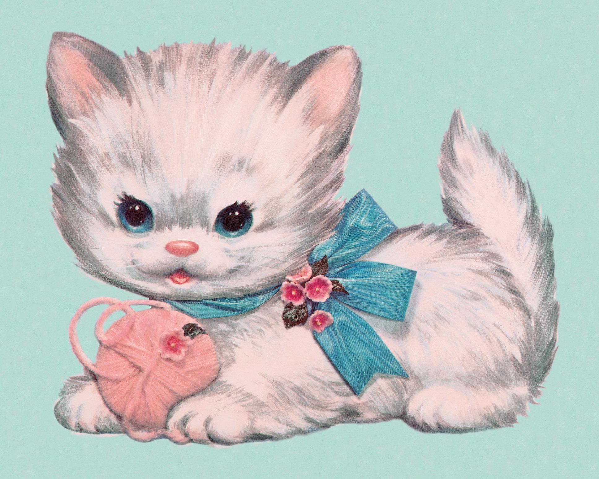 Boob Cat Cat Feline Gay Kitten Man Man
