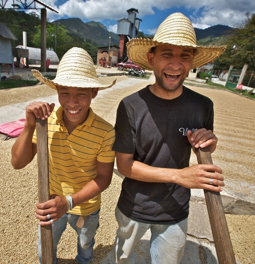 Luis Escobar Lara and Victor Samuel Galix working at the coffee drying patio at COCAOL, a fair trade coffee producer in Hondu