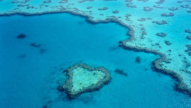 Great Barrier Reef, Queensland,