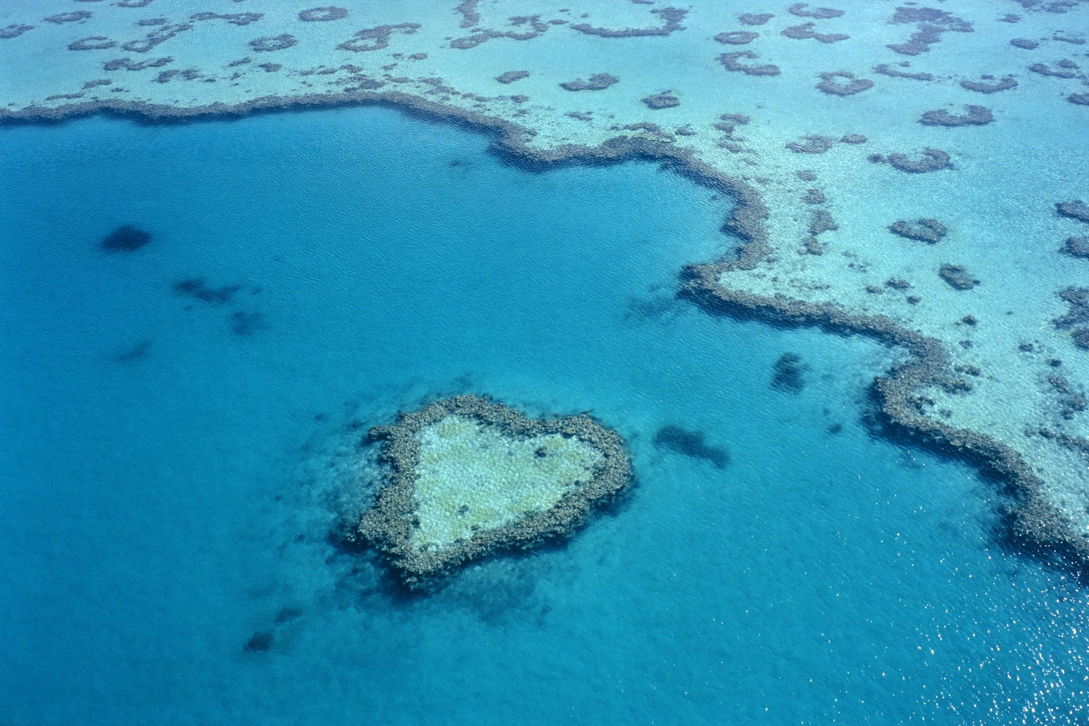 Great Barrier Reef, Queensland, Australia.