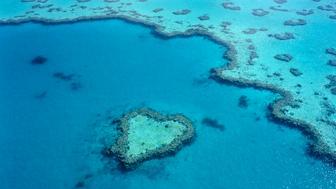 Great Barrier Reef, Queensland, Australia, Australasia