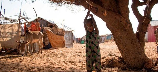 Somali Refugees Decry Empty Promises Upon Return From Dadaab Camp