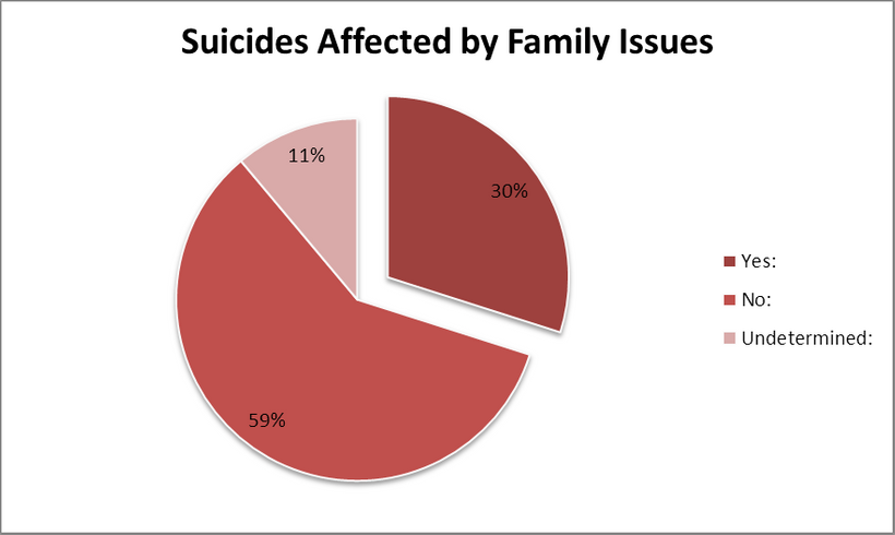Pie graph illustrating the breakdown of data analyzed by Second Class Citizen that correlates to issues involving family cour