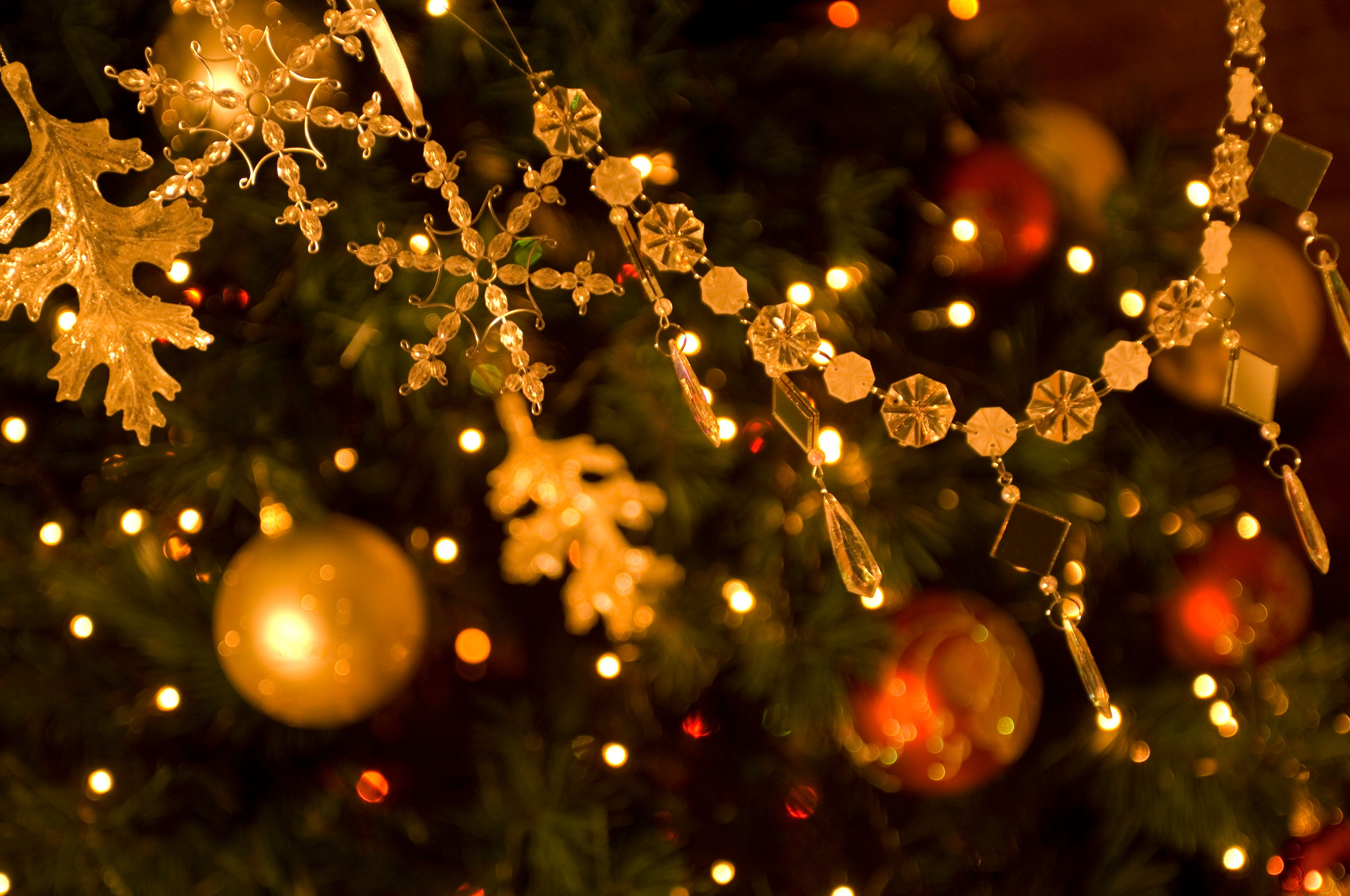 Neighborhood Celebrates Christmas Early To Fulfill Dying Woman's