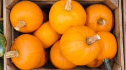 Turns Out Pumpkins Are Actually A Fruit, And Humans Know