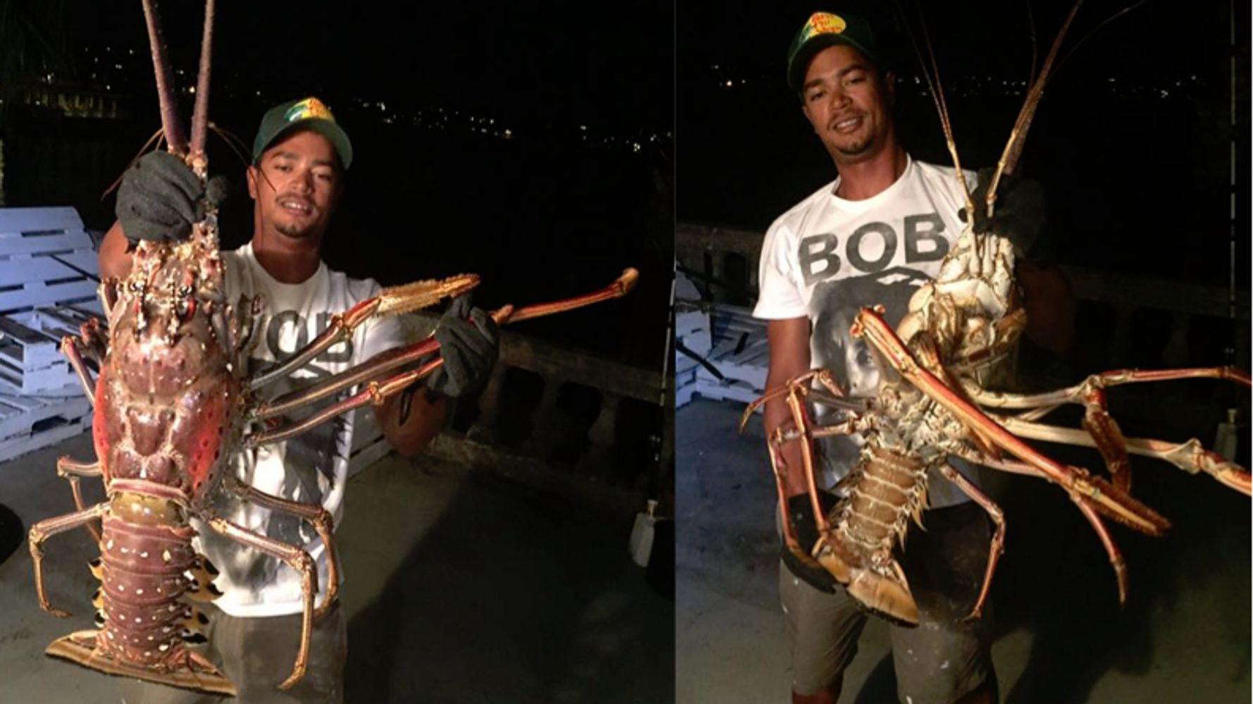 Fishermen Capture 14-Pound 'Sea Monster' Lobster Off Bermuda's Shore