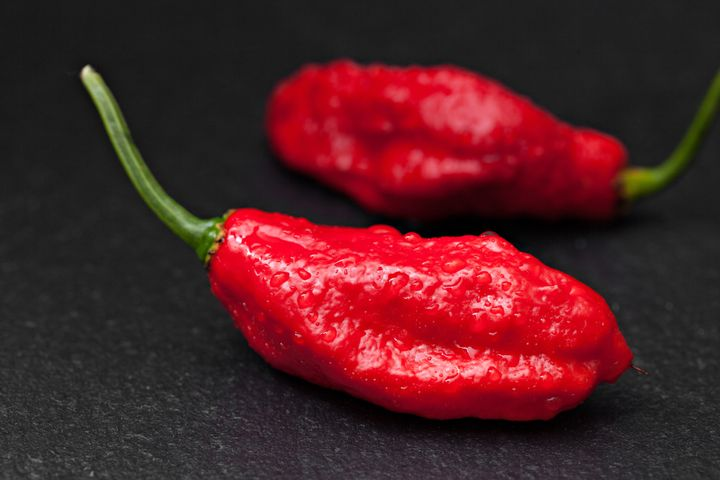 The ghost pepper.