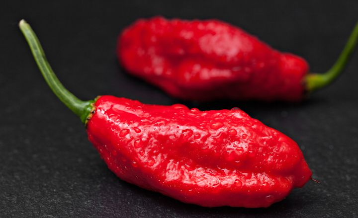 Ghost peppers are so hot.