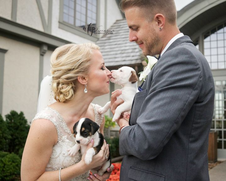 Kathryn Dombrowski andBrad Ziemer enjoyed lots of puppy love on their big day.