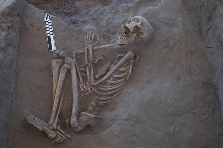 The skeleton during the process of excavation.