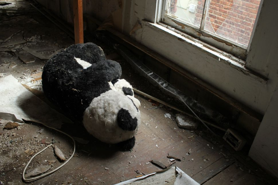 "A stuffed animal found in one of the houses used in the ""Breathing Lights"" exhibition."