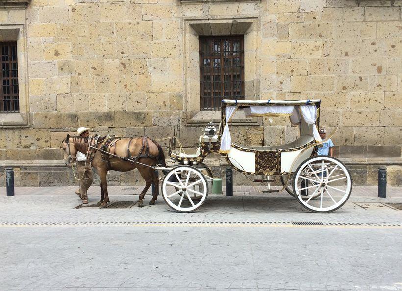 Traditional transport in Guadalajara.