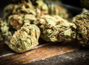 Got to write a paper about Marijuana Abuse?