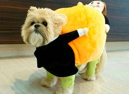 Munchkin The Dog Has Just Given All Dogs Halloween Dress-Up Goals