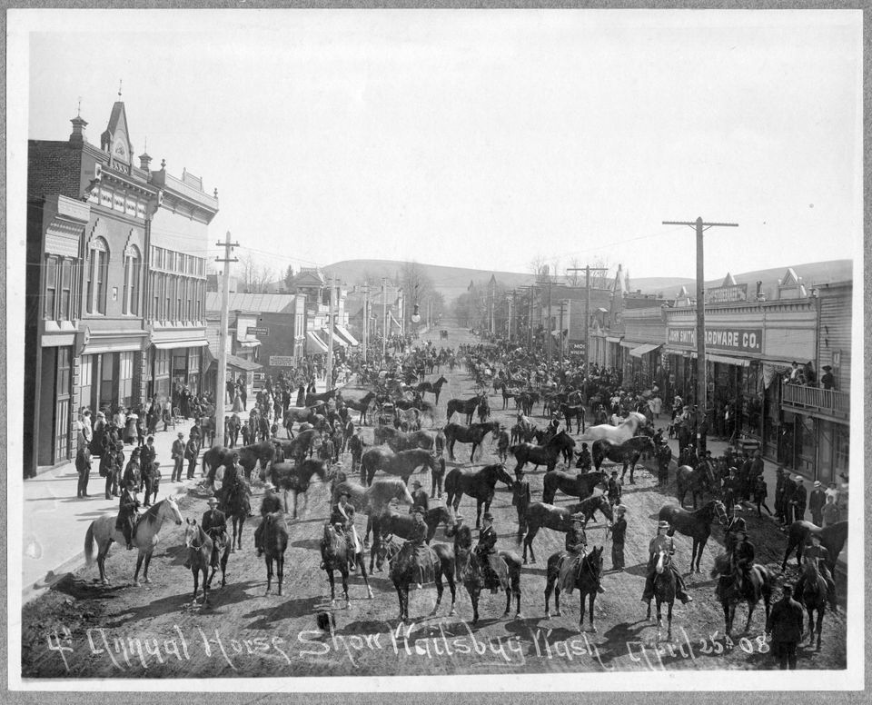 The annual horse show on Main Street in Waitsburg, Washington on April 25, 1908.