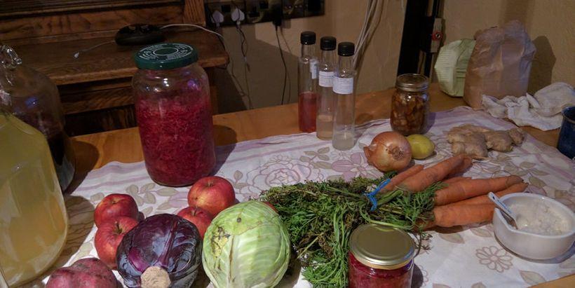 Ingredients for healthy sauerkrauts
