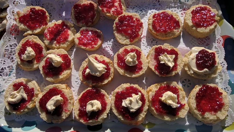 Scones with Glenilen clotted cream and berries