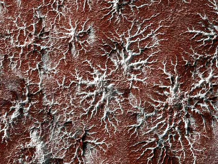 Another image from Mars' south polar region showing spider shapes that may have been formed by frozen carbon dioxide.
